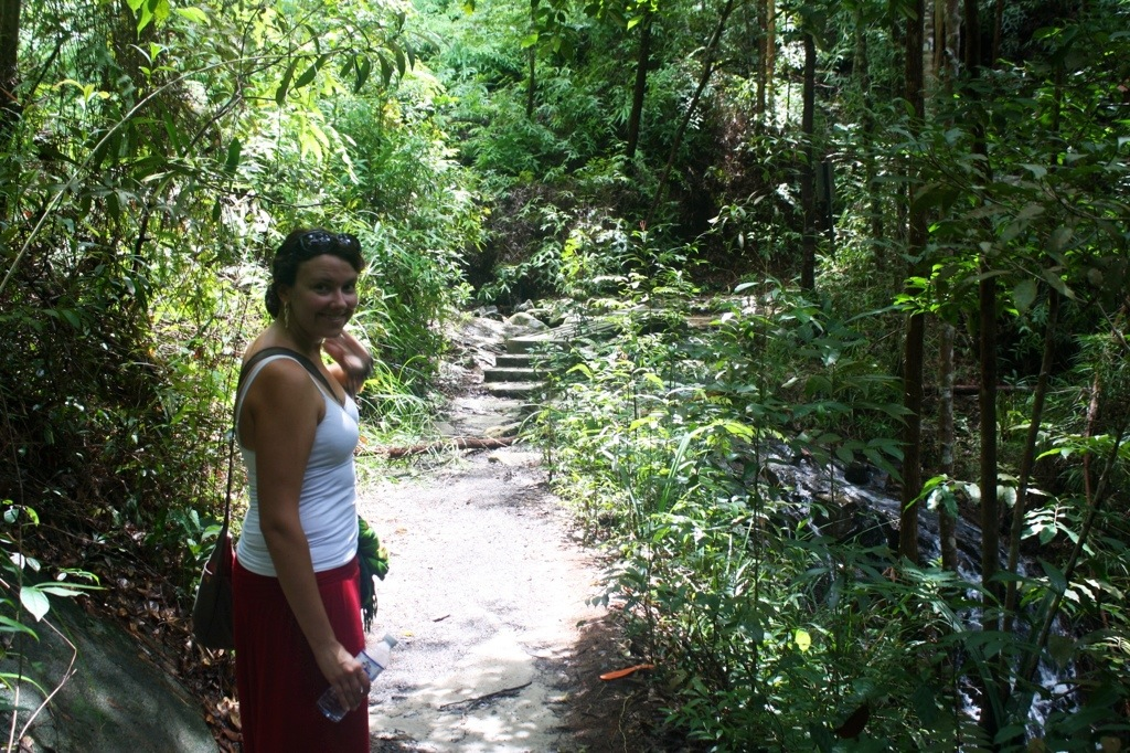 Hiking Through the Rainforest of Penang